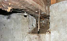 Rotted support in crawl space